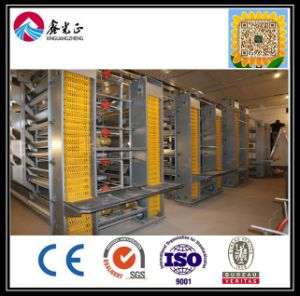 Xgz Prefabricated Broiler Poultry House/Farm Poultry Shed (GR-009) pictures & photos