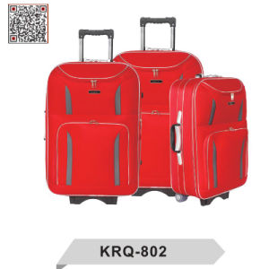 EVA 300d Shandong Silk Outside Trolley Luggage pictures & photos