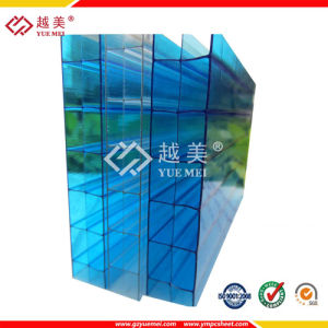 4mm 6mm 10mm Thickness of Clear Twin Wall Polycarbonate Sheet pictures & photos
