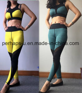 Wholesale Women Sportswear Quickly Drying Fitness Suit pictures & photos