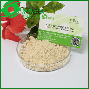 Inflammation Drug Magnolia Bark Extract 10%~95% Honokiol +Magnolol pictures & photos