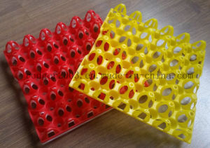Plastic Injection Mold/Mould for Egg Tray pictures & photos