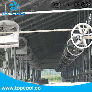 """Livestock Ventilation Equipment Panel Fan 50"""" for Dairy Cooling pictures & photos"""
