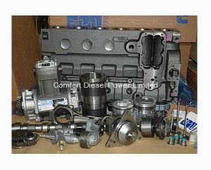 3094884 V-Belt for Cummins Engine