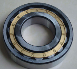 N319 Bearing or N330 N324m Bearing for Reducer&Gearbox pictures & photos