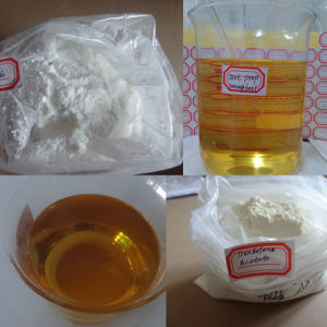 masteron enanthate dosage