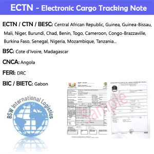 Ectn (ELECTRIC CARGO TRACKING NUMBER) , for Africa Area Custom Clearance pictures & photos
