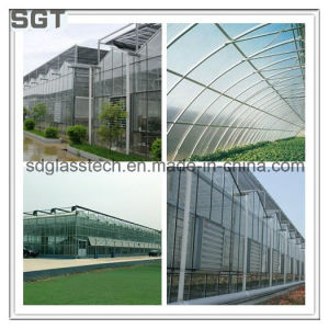 Toughened Glass Low Iron Glass for Horticulture pictures & photos