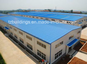Xiamen Steel Structure Building pictures & photos