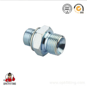 1bg Bsp Male 60 Degree Seat / Bsp Male O-Ring Stud End Hydraulic Fitting pictures & photos