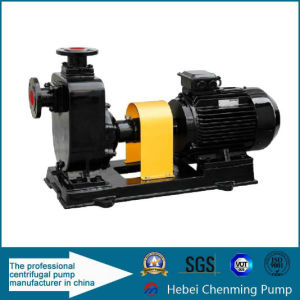 Stainless Steel Horizontal Corrosive Liquid Transfer Centrifugal Pump Set pictures & photos