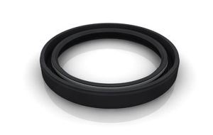 Good Chemical Resistance Radial Oil Seal pictures & photos