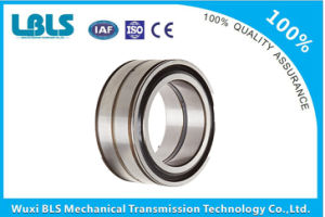 Nn4876 W33 Double Row Cylindrical Roller Bearings pictures & photos