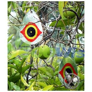 Reflective Eye Bird Diverters China Manufacturer pictures & photos