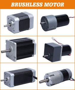 6V-36V BLDC Electric Geared Brushless DC Motor for Electric Tool pictures & photos
