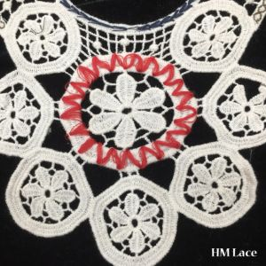 35*35cm Lovely Floral embroidery Cotton Lace Collar, Flower Fringe Neckline Lace Hm2040 pictures & photos