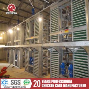 Strong Automatic Poultry Layer Cage for Hot Sale pictures & photos