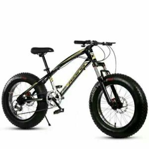 China High Quality Hotsale OEM Fat Tire Bike Fat Bike pictures & photos