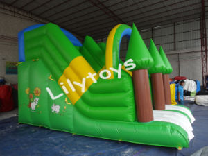Lilytoys Outdoor Sport Games Giant Inflatable Slide for Rent pictures & photos