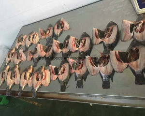 300-500g Chinese Frozen Tilapia Fish for Sell pictures & photos