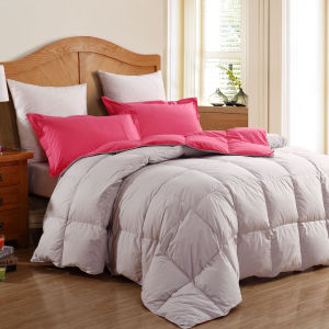 Wholesale High Quality Feather Duvet/Quilt/Comforter pictures & photos
