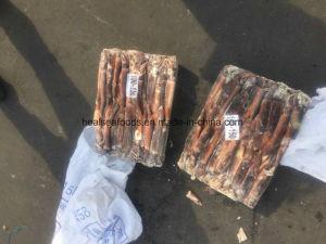 Chinese Big Frozen Squid Price /Illex Squid pictures & photos