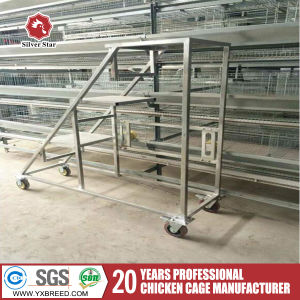 Automatic H Type Layer/Broiler Chicken Egg Layer Cage Hot Sale pictures & photos