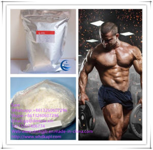 99% Purity Nandrolone Phenylpropionate Steroids Powder CAS62-90-8 pictures & photos