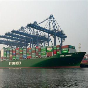 Sea Freight From China to Le Havre, France pictures & photos