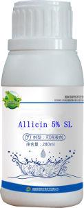 Garlicin 5% SL pictures & photos