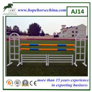 Equestrian Products for Show Jumping pictures & photos
