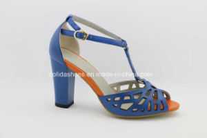 New Sexy High Heels Lady Sandals for Fashion Women pictures & photos