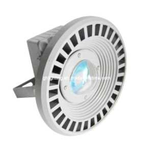 50W COB LED Floodlight CE Certified (GH-TG-18) pictures & photos