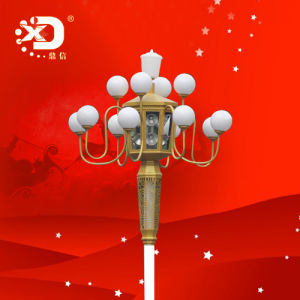 10m T Street Lighting Pole with Ten Head Light pictures & photos