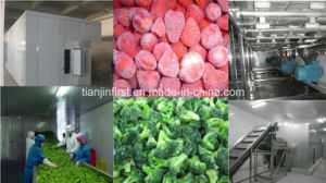 Fluidized Freezer for Fruit and Vegetable IQF Seafood Strawberry pictures & photos
