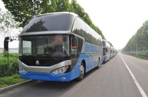 11 Meters Series 50 Steats Diesel Luxury Tour Bus pictures & photos
