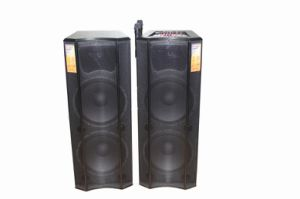 Professional Active Stage Speakers (F96)