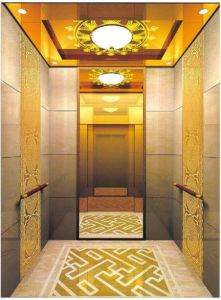 Gearless Vvvf Drive Home Elevator with German Technology (RLS-235) pictures & photos