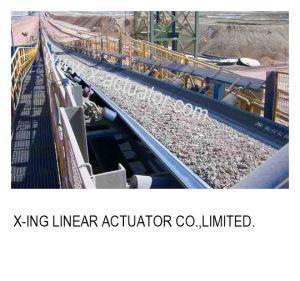 Belt Conveyor pictures & photos