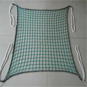 Square Hole plastic Knotless Cargo Net pictures & photos