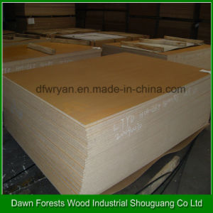 Special Size Melamine Laminated Chipboard for Furniture Usage pictures & photos