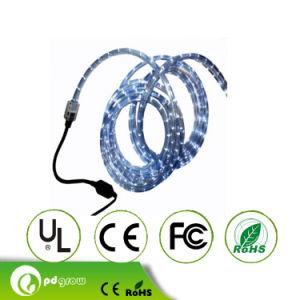 5m/Roll 12V SMD3528 LED Strip Light 60LED/M 4.8W/M IP68 Waterproof