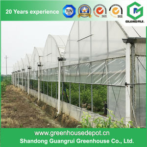 Excellent Material Agriculture Greenhouse/Low Cost Green House pictures & photos