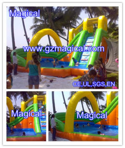 Commercial Giant Inflatable Water Slide with Pool for Kids and Adults (MIC-546) pictures & photos