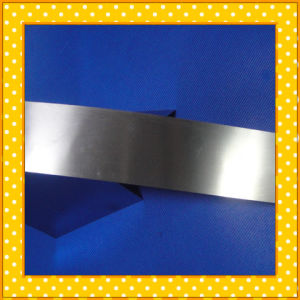 Stainless Steel Strip Foil pictures & photos