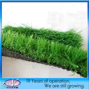 Cheap Sale Artificial Grass Carpet Turf for Landscaping pictures & photos
