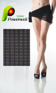 Super Quality Solar Power Panel with Competitive (BW-SM 210M72)