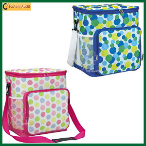Durable Zippered Cooler Lunch Bag (TP-CB350) pictures & photos