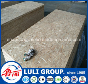 18mm OSB Price pictures & photos