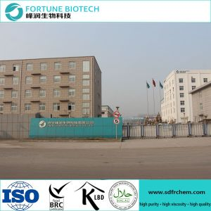 CMC Powder Used in Papermaking Mill Passed ISO pictures & photos